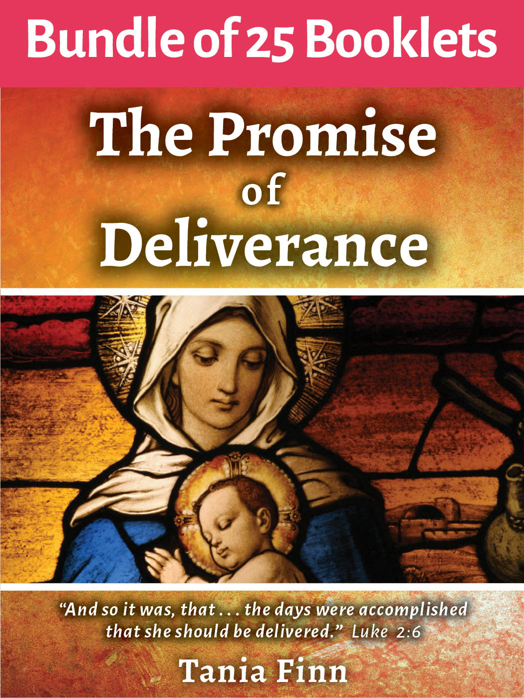 Bundle of 25 – The Promise of Deliverance – Physical Booklet (2020)