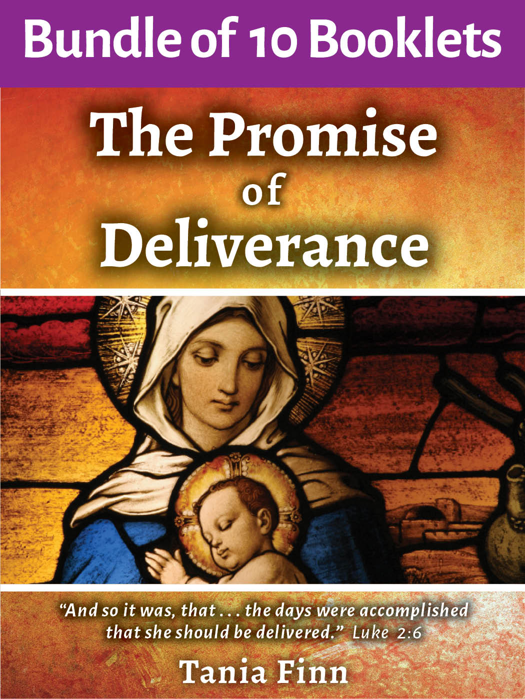 Bundle of 10 – The Promise of Deliverance – Physical Booklet (2020)